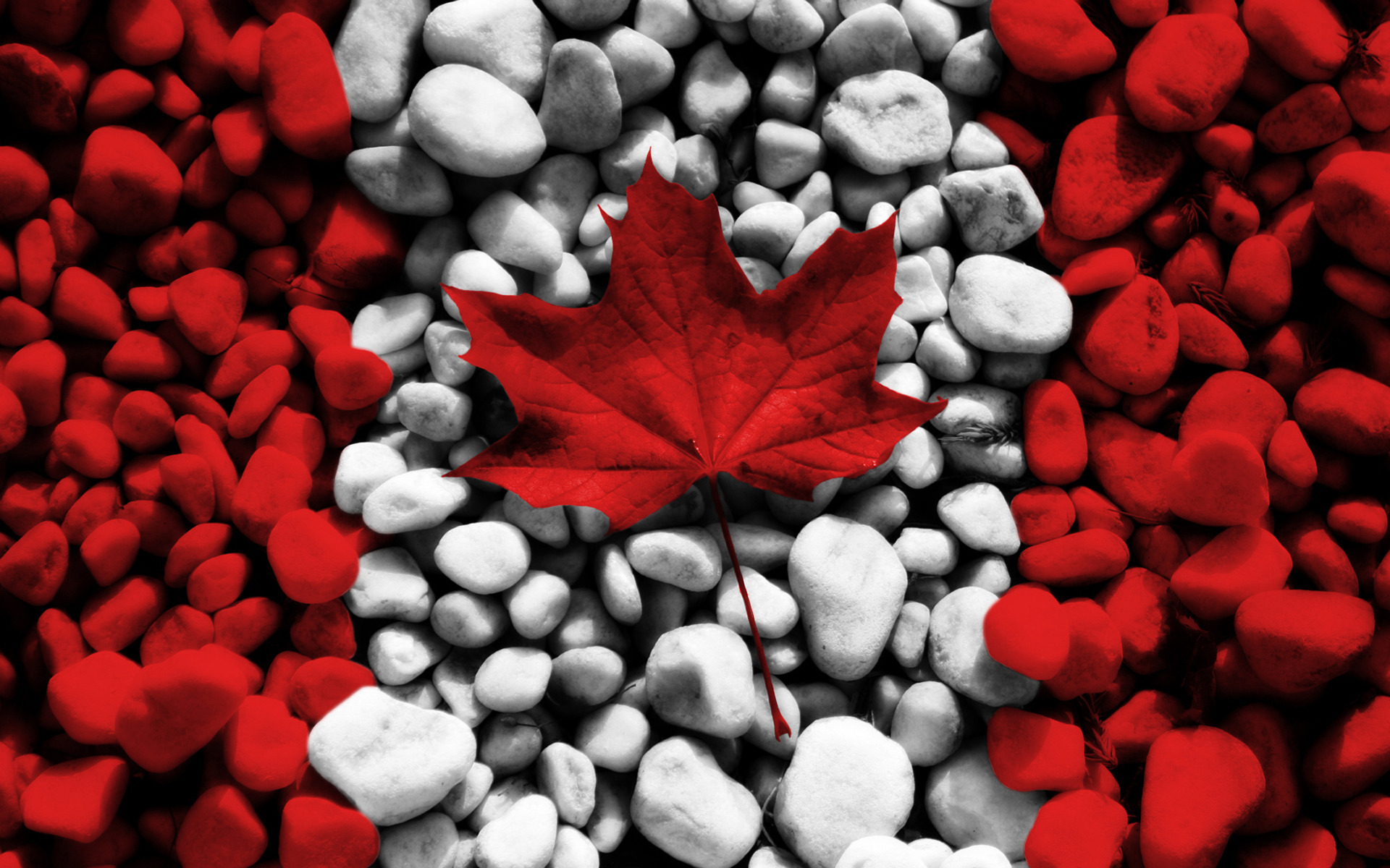 Canadian flag stone
