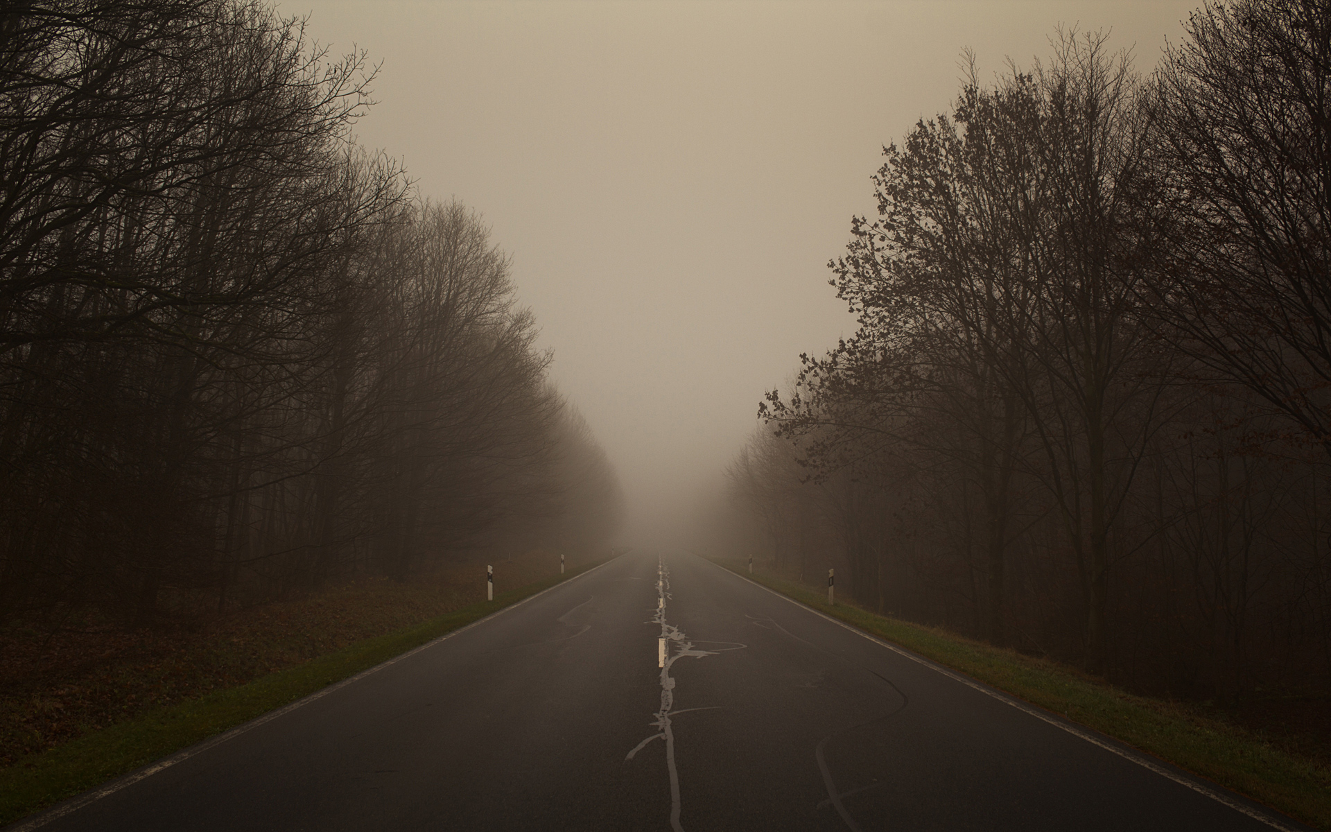Road disappearing into the mist wallpaper.