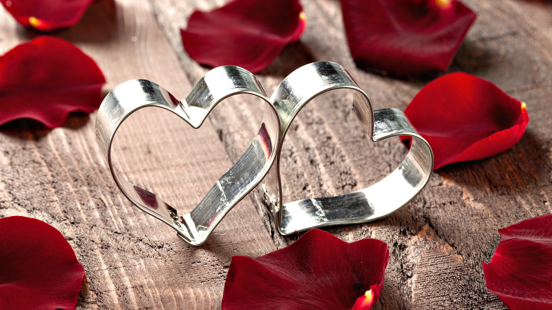 Steel heart and rose petals