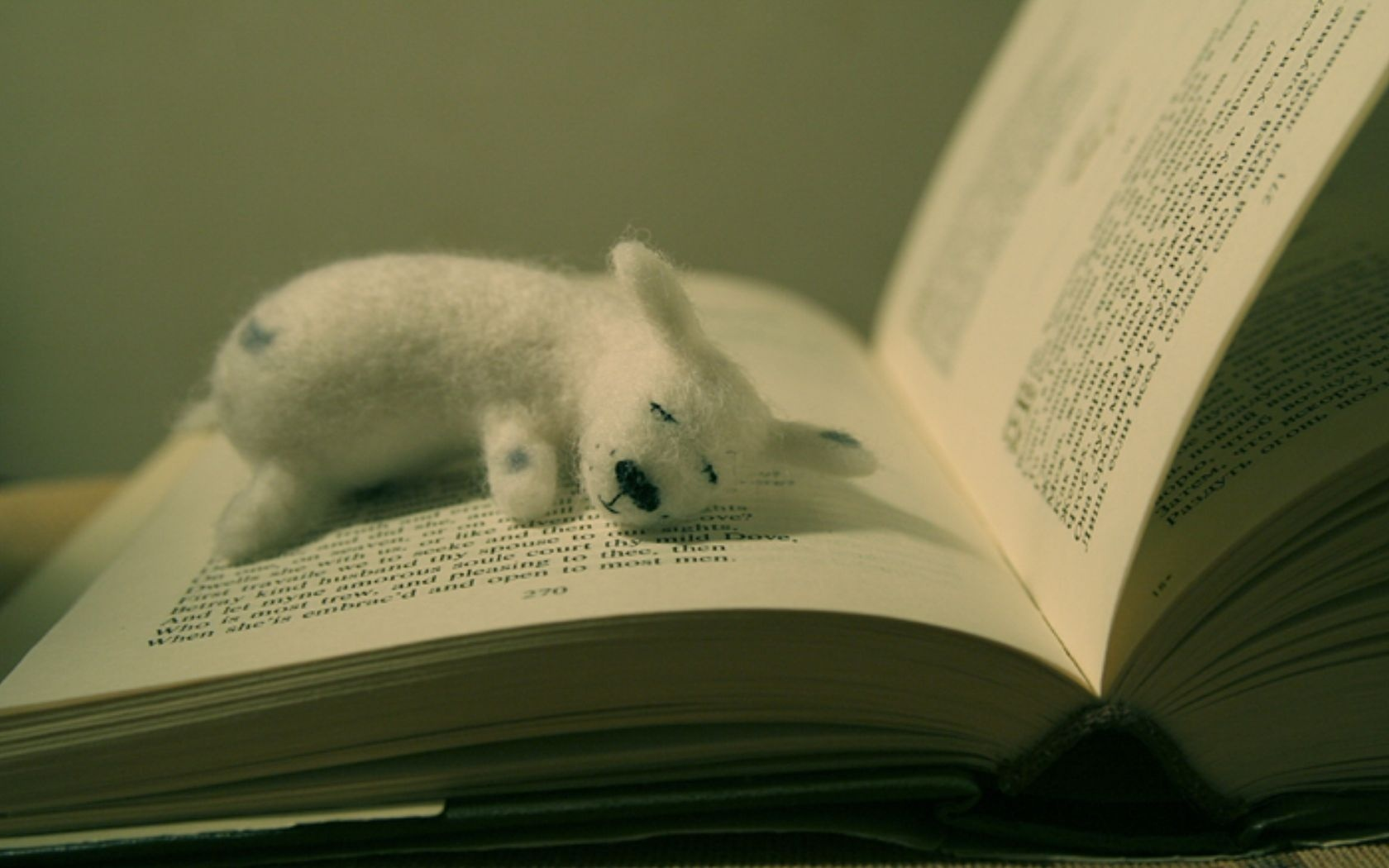 toy, book, page