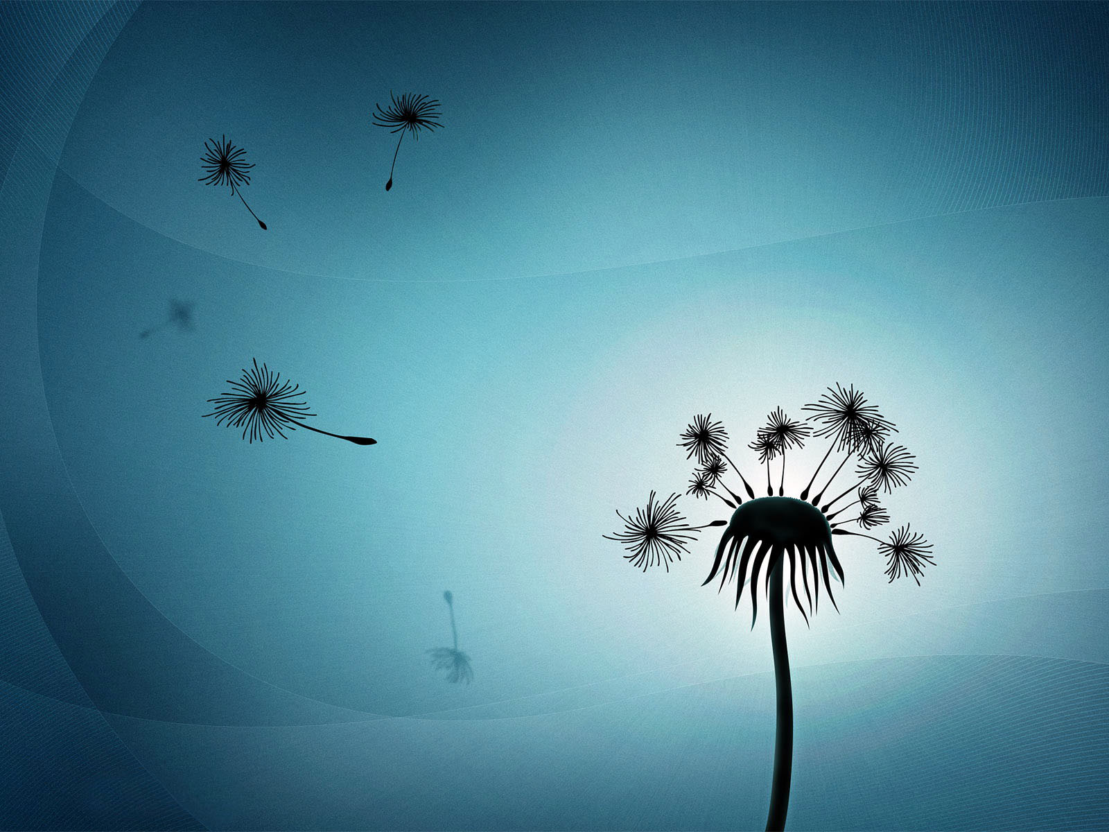 Vector image of a dandelion, vector wallpaper high resolution.