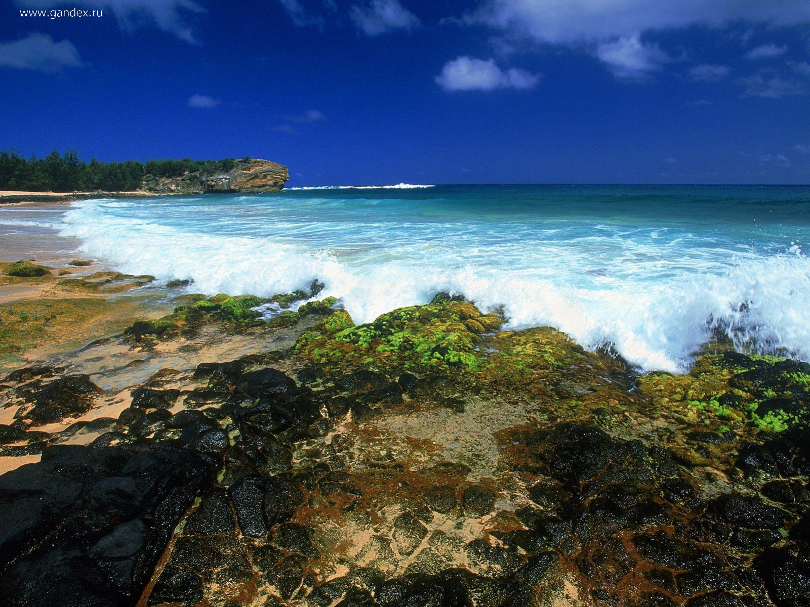 Sea beach in Hawaii photo wallpaper for your desktop.